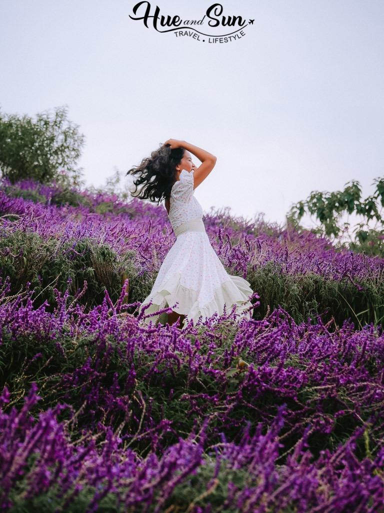 Đèo Pha Đin đồng hoa tím và hoàng hôn vạn người mê