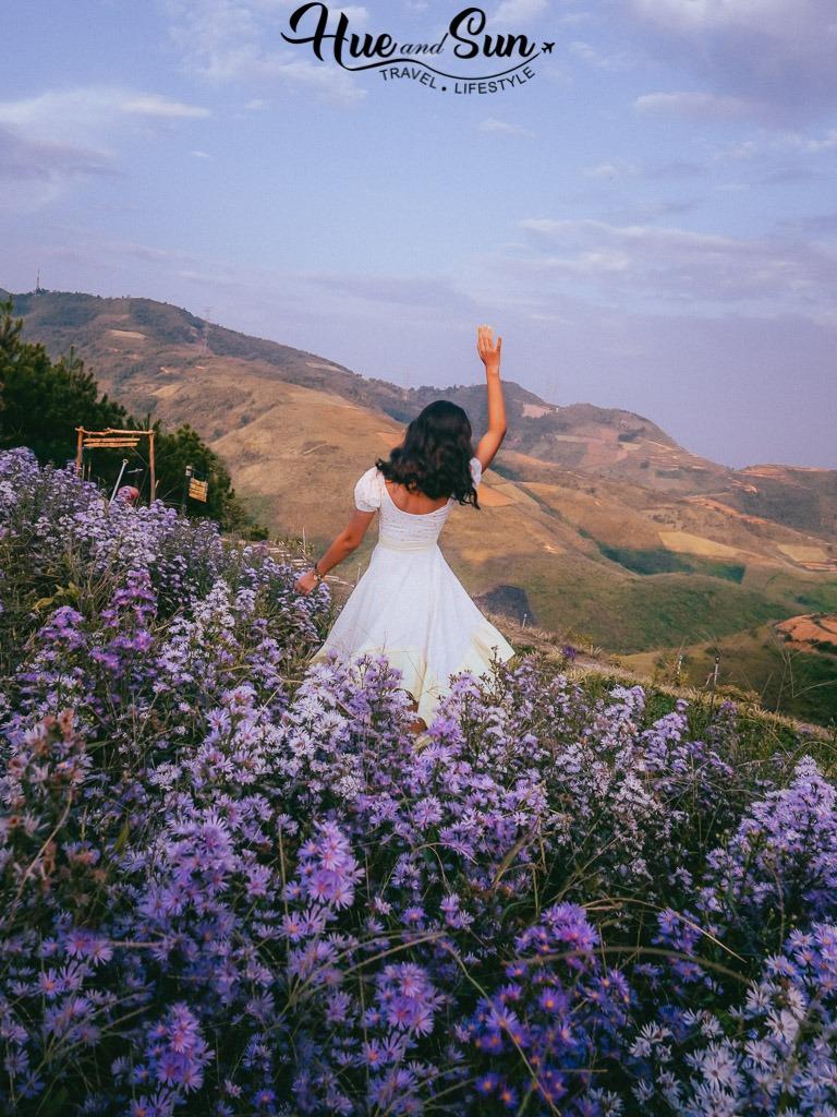Đèo Pha Đin tứ đại đỉnh đèo Tây Bắc và đồng hoa tím và hoàng hôn vạn người mê